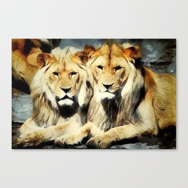 lion's harmoni Canvas Print