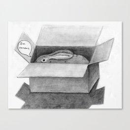 Bunny In A Box Canvas Print