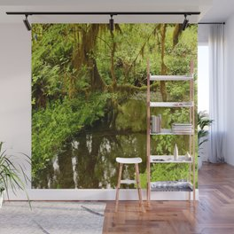 Rainforest Reflection Wall Mural