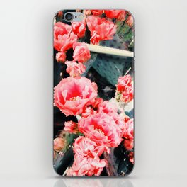 closeup blooming red cactus flower texture background iPhone Skin