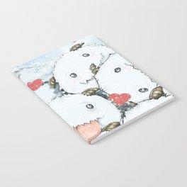 Poros Notebook