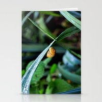 snail Stationery Cards featuring Snail by  Agostino Lo Coco