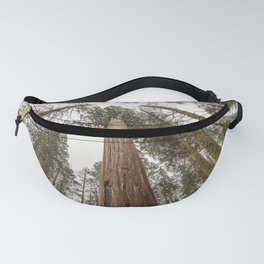 Sequoia Stretch - Nature Photography Fanny Pack