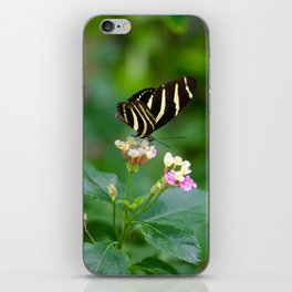 Cal. Academy Butterfly iPhone Skin