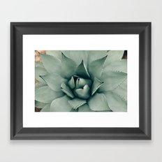 Desert Succulent Framed Art Print