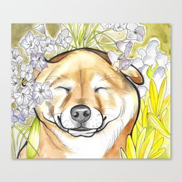 Jay Jay the happy Shiba Canvas Print
