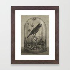 The Curiosity  Framed Art Print