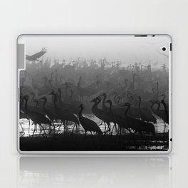Cranes in the fog Laptop & iPad Skin