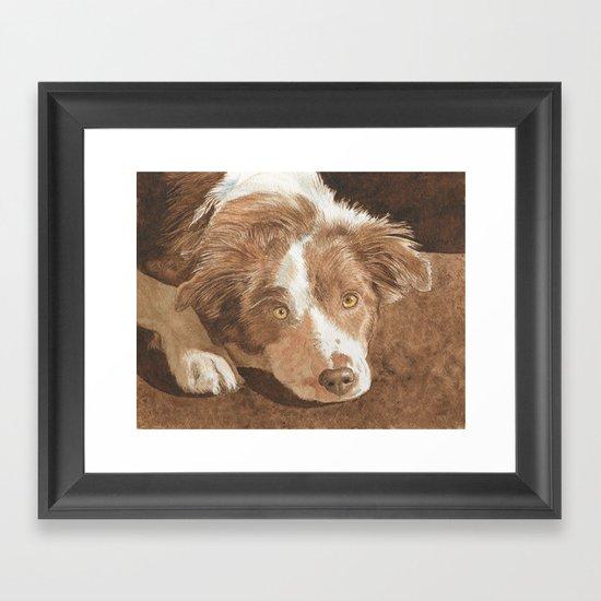 Border Collie Puppy Wren Framed Art Print