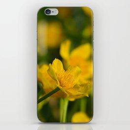 Marsh Marigold iPhone Skin