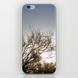 Sunset Cacti 3 iPhone Skin