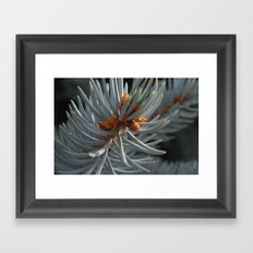 pining for you Framed Art Print