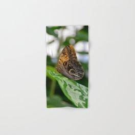 Owl Eye Butterfly by Teresa Thompson Hand & Bath Towel