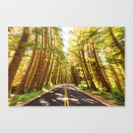 ecola state park road Canvas Print