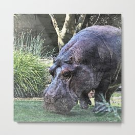 painted hippopotamus Metal Print