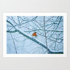 Robin in the cold Art Print