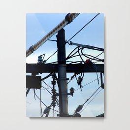 Telegraph Wires Metal Print