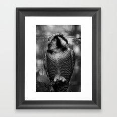 Owl series no.1 Framed Art Print