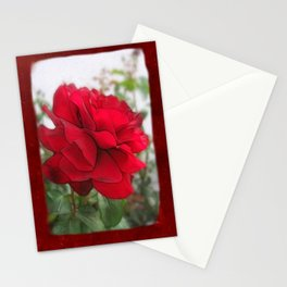 Red Rose Edges Blank P5F0 Stationery Cards