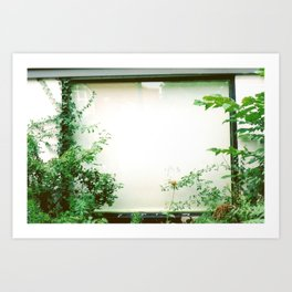 picture window Art Print