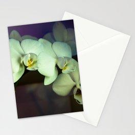 Unterwegs_1576 Stationery Cards