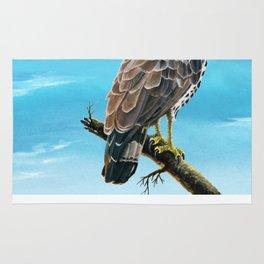 Congo Serpent Eagle Rug