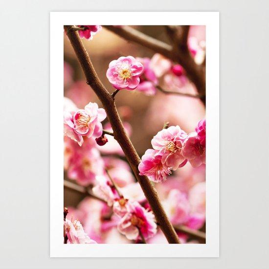 PEACH FLOWERS Art Print
