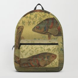 Paradise Fish Scene from 1887 Lithograph (Macropodus Viridi Auratus) Backpack