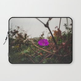 Lonely flower of Naszály mountain Laptop Sleeve