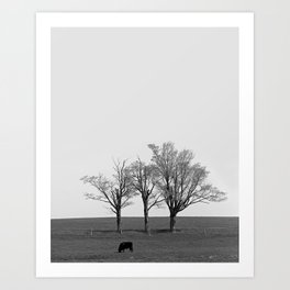 Three Trees and a Bull Art Print
