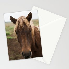 Horse in Iceland - nature photography Stationery Cards