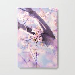 cherry pink Metal Print