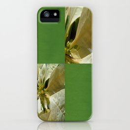 Pale Yellow Poinsettia 1 Blank Q5F0 iPhone Case