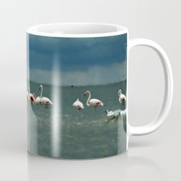 Flamingos in Alexandroupoli Coffee Mug