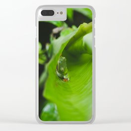 Bright green tropical frog sleeps on a leaf in the rainforest of Costa Rica Clear iPhone Case