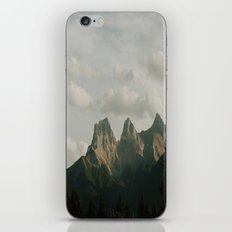 This is freedom iPhone & iPod Skin