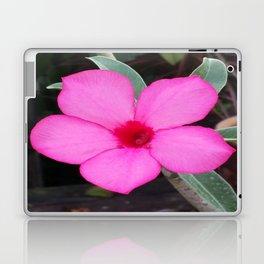 A BLUSH OF PINK Laptop & iPad Skin