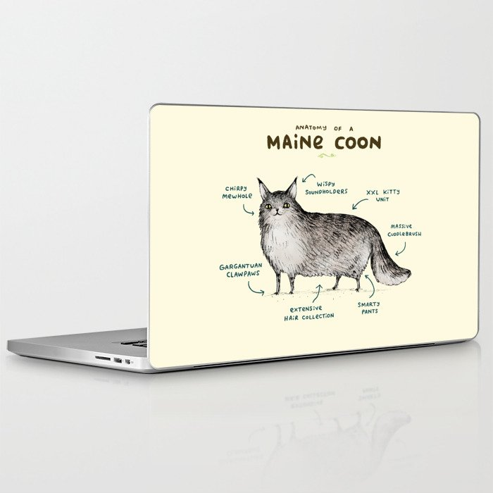 Anatomy of a Maine Coon Laptop & iPad Skin by sophiecorrigan | Society6
