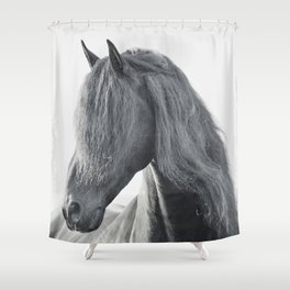 Wild Stallion - Black Friesian Horse Shower Curtain