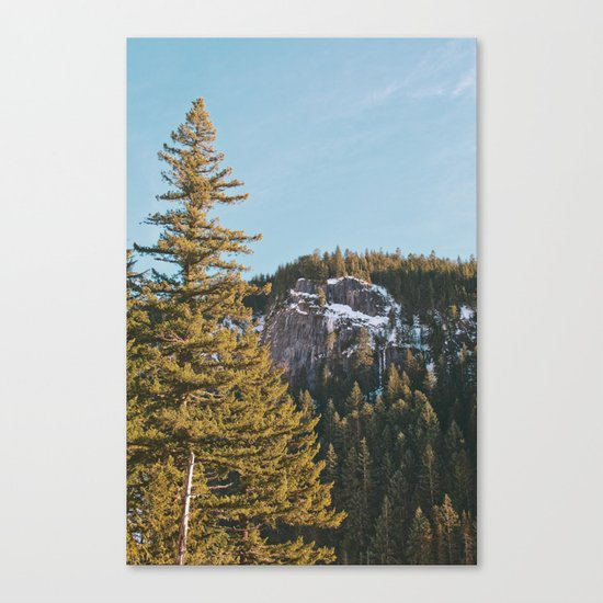 Trees in the Mountains Canvas Print