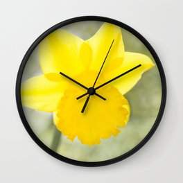 I wandered lonely etc. etc. Wall Clock