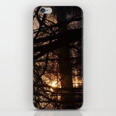 Winter Sun and River iPhone & iPod Skin