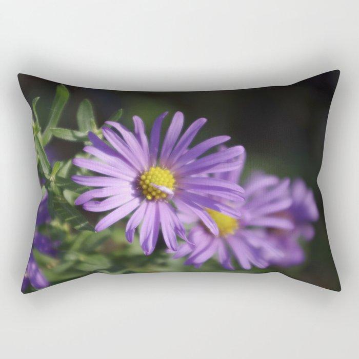 Lovely lavender aster Rectangular Pillow