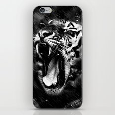 Tiger Head Wildlife iPhone & iPod Skin
