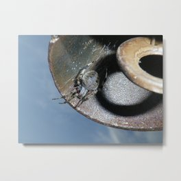spider in the windchime Metal Print