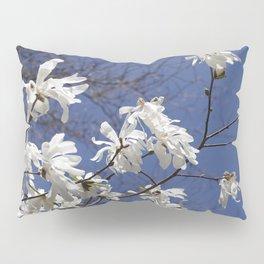 Star filled sky (Star Magnolia flowers!)      Edit Pillow Sham