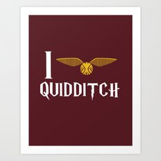 I love Quidditch Art Print
