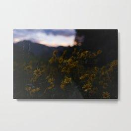 Wildflower Sunset Metal Print