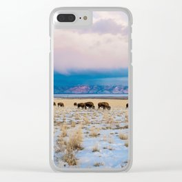 The Badlands Clear iPhone Case