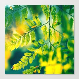 Memories in the Leaves Canvas Print